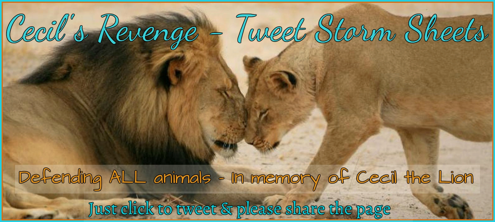Cecil's Revenge Tweet Sheets – It's time to Storm!