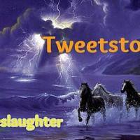 Tweet Storm to Ban Horse Slaughter